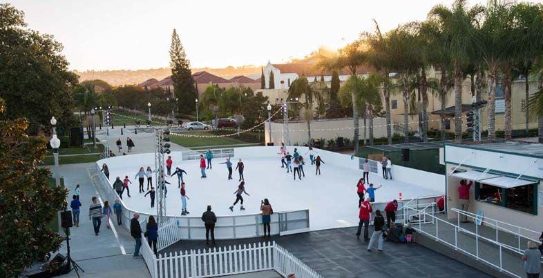 All Skate NTC Foundation