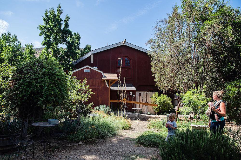 El Cajon - Summers Past Farms