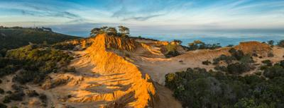Inside the Icon: Torrey Pines State Reserve