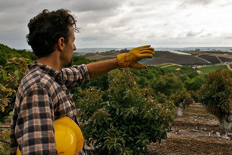 Jason Mraz Is Growing Coffee on a Farm in Oceanside