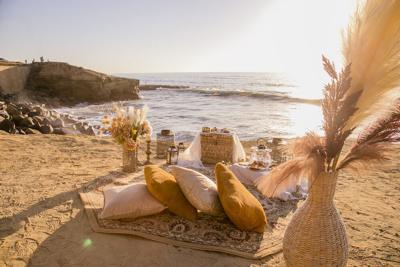 San Diego Picnics