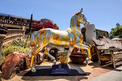 San Diego Artists Paint the Town with 'Art of the Horse'