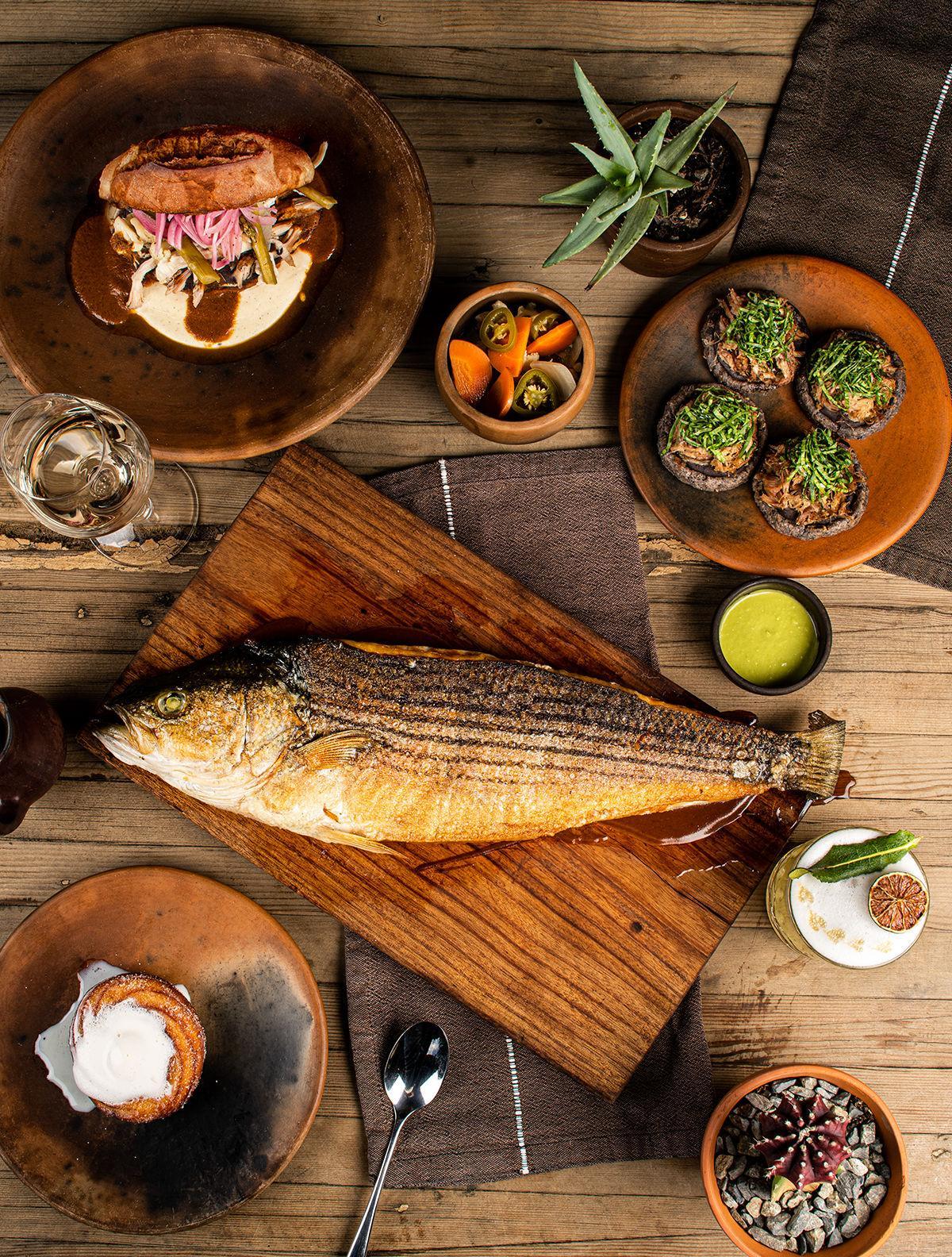 Fauna Review – Food Bass