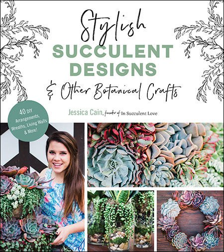 3 Ways to Style Your Succulents for the Holidays