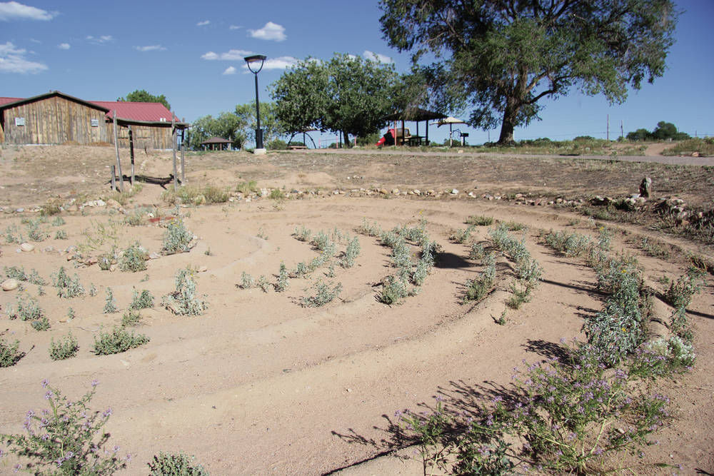 Rustic and rough Frenchy's Field thirsts for water