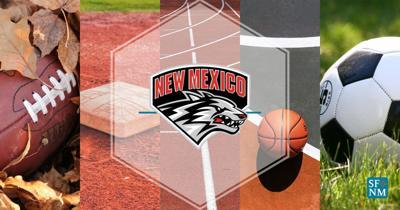 New Mexico Lobos logo secondary