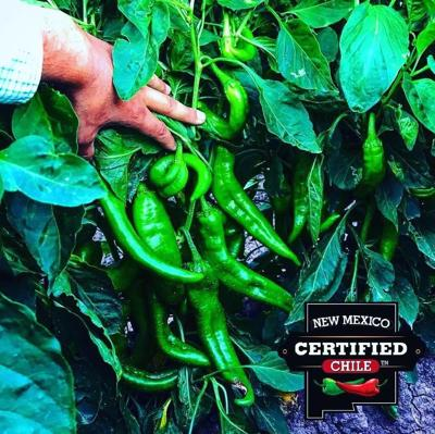 Industry group: Don't settle for fake Hatch chile