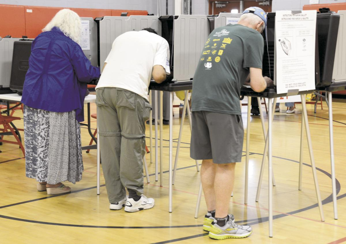 First-timers among Santa Feans who voted in primary | Local News