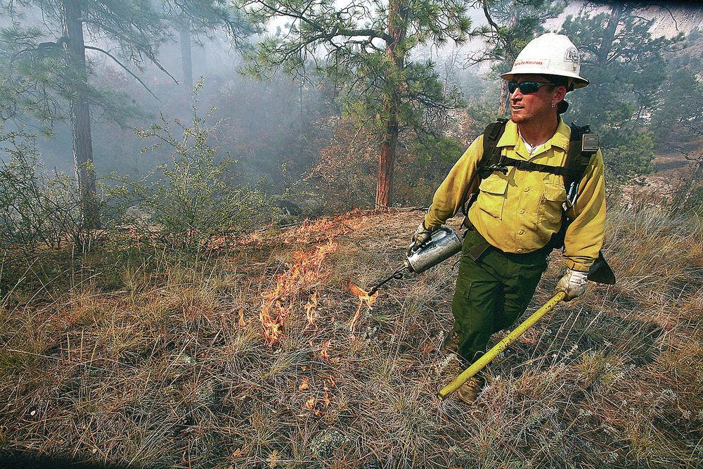 Fire top factor as officials update forest management plan