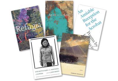 29 nov books poetry roundup