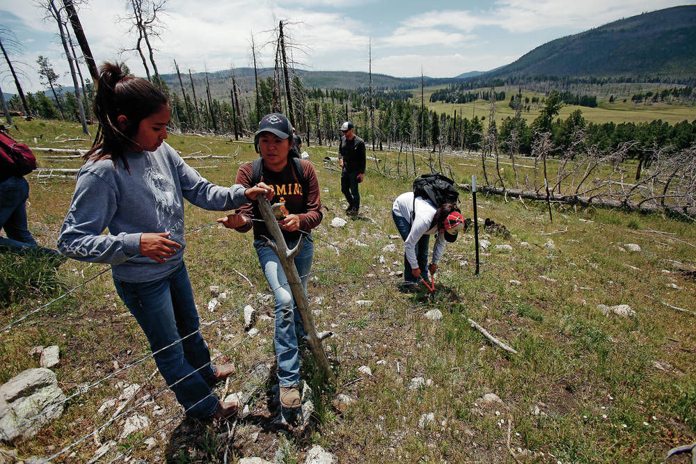 Crew of youth, mostly Native, working to restore Valles Caldera