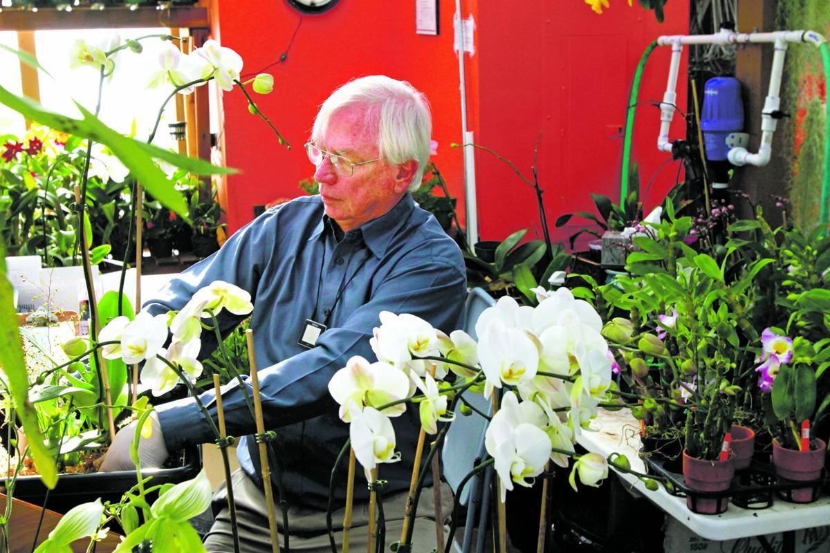 Santa Fe orchid business flourishes