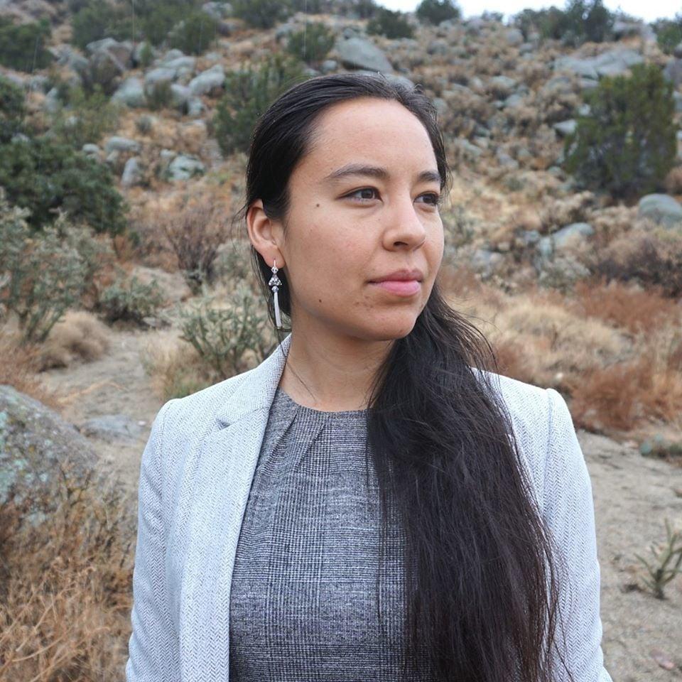 Climate activist challenges House speaker