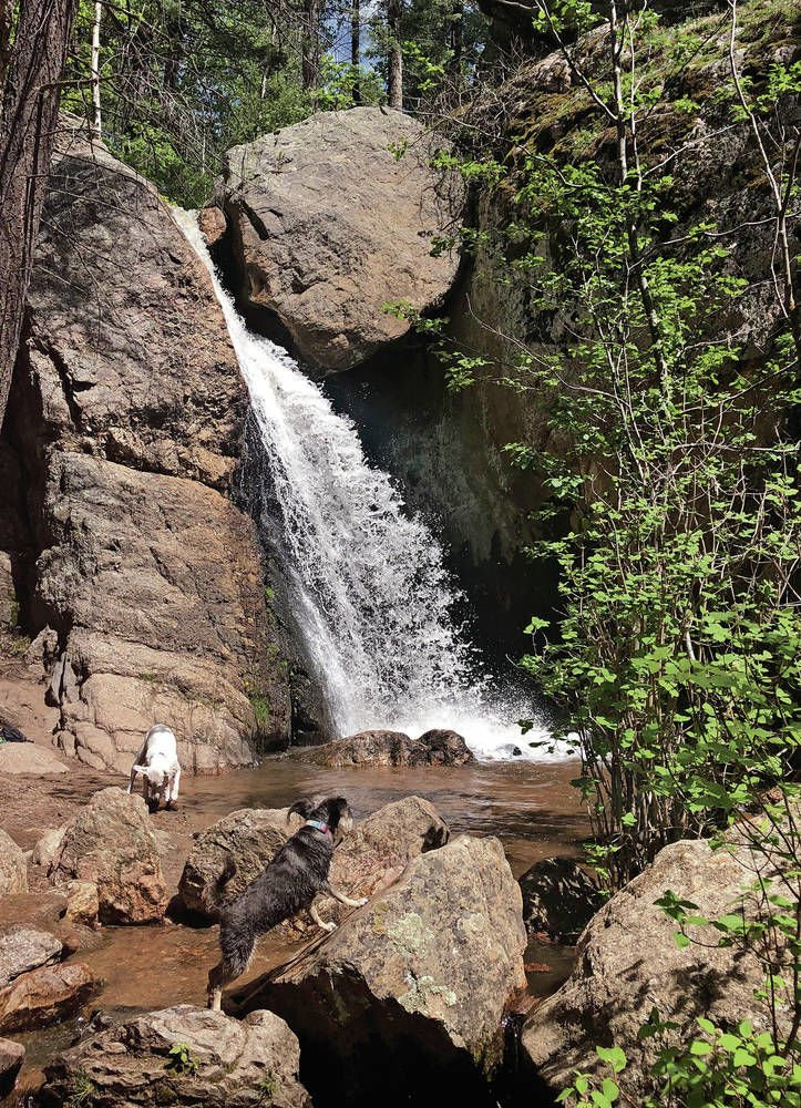 Four hikes for the Fourth