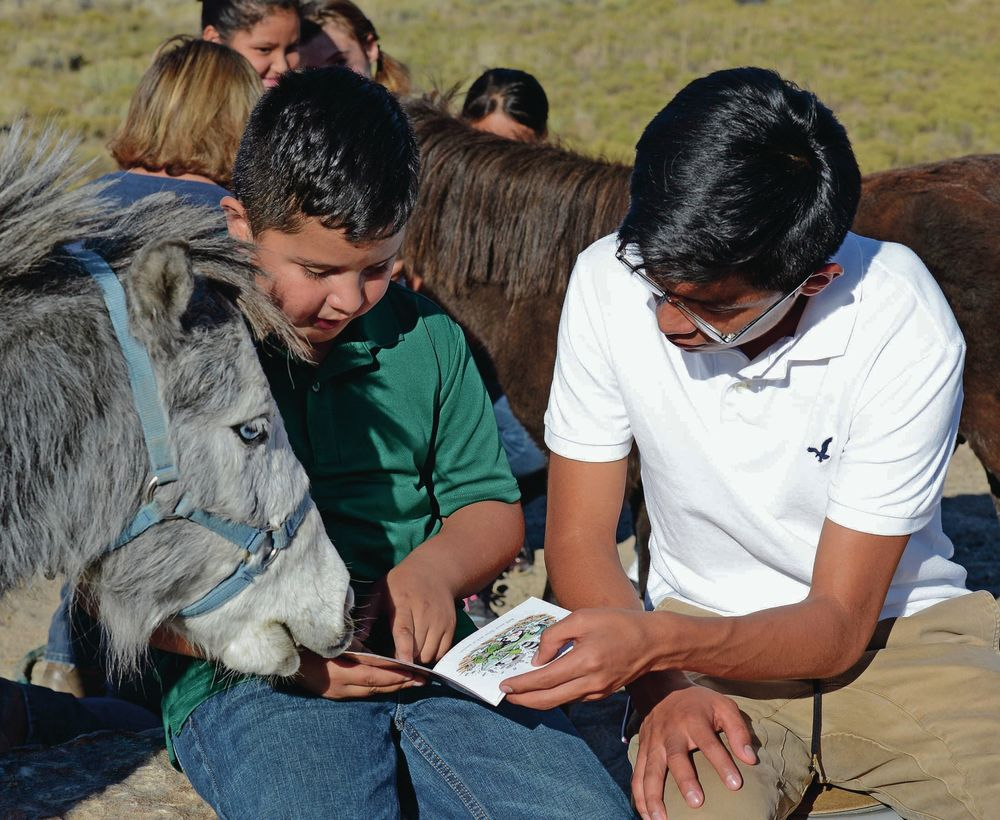 Reading without pressure: Miniature horses help children practice