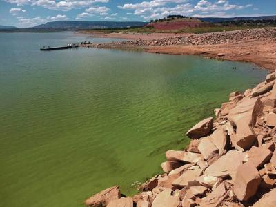Algae bloom closes Abiquiu Lake; toxicity test results expected soon