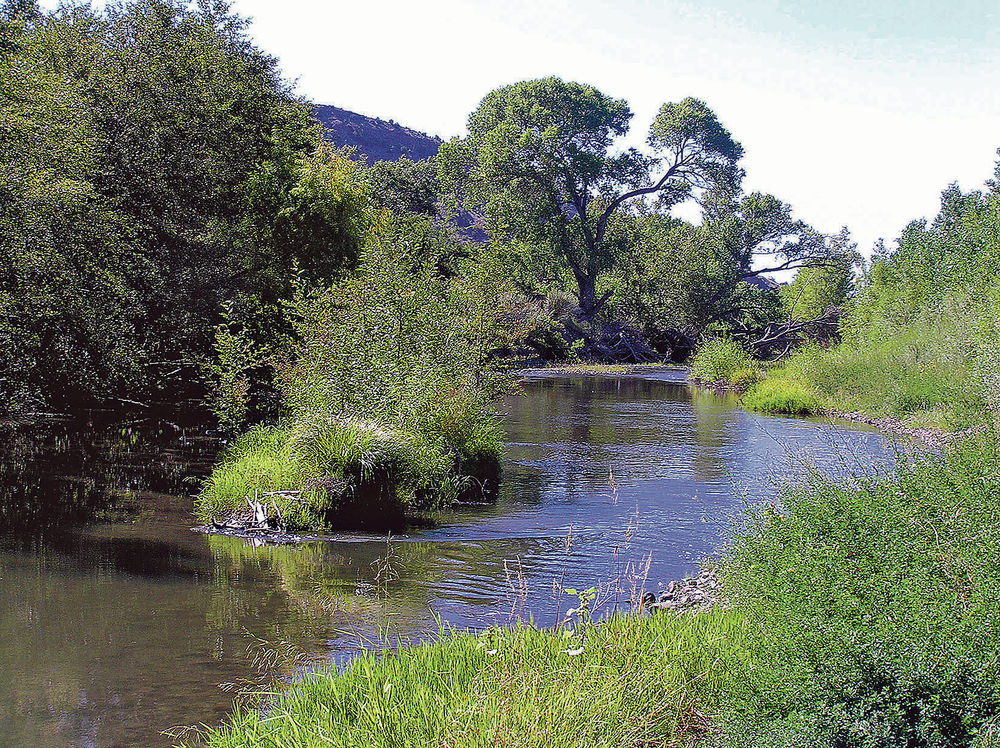 Stream commission accused of meetings law violations