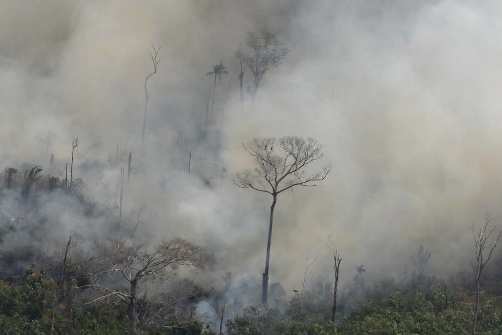 Brazil sending army to fight Amazon fires