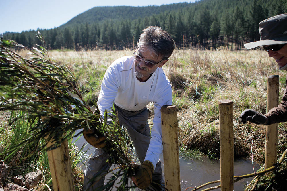 Manmade beaver-style dams help restore land in New Mexico