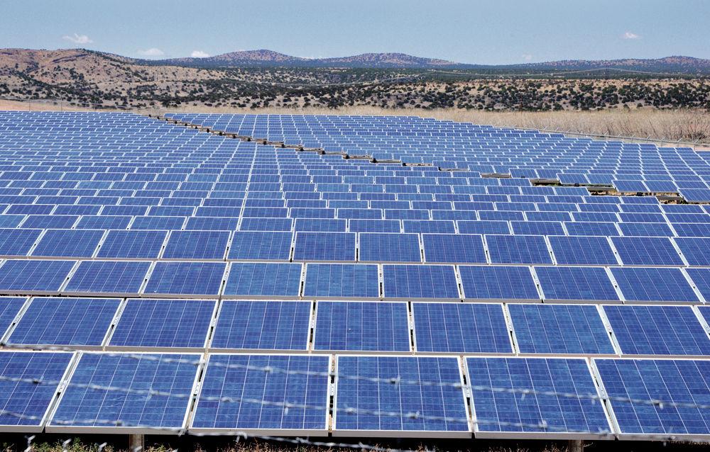 In harsh California desert, solar-power plants, fragile wildlife compete
