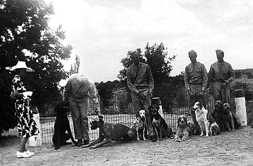 Santa Fe's dogs of war