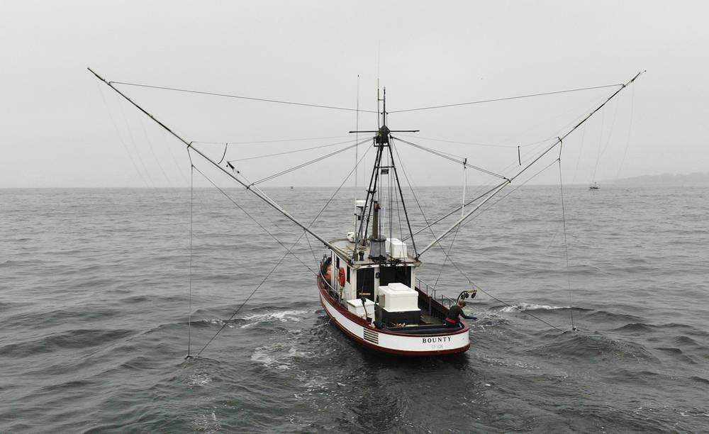 Pacific fishermen report best king salmon season in years