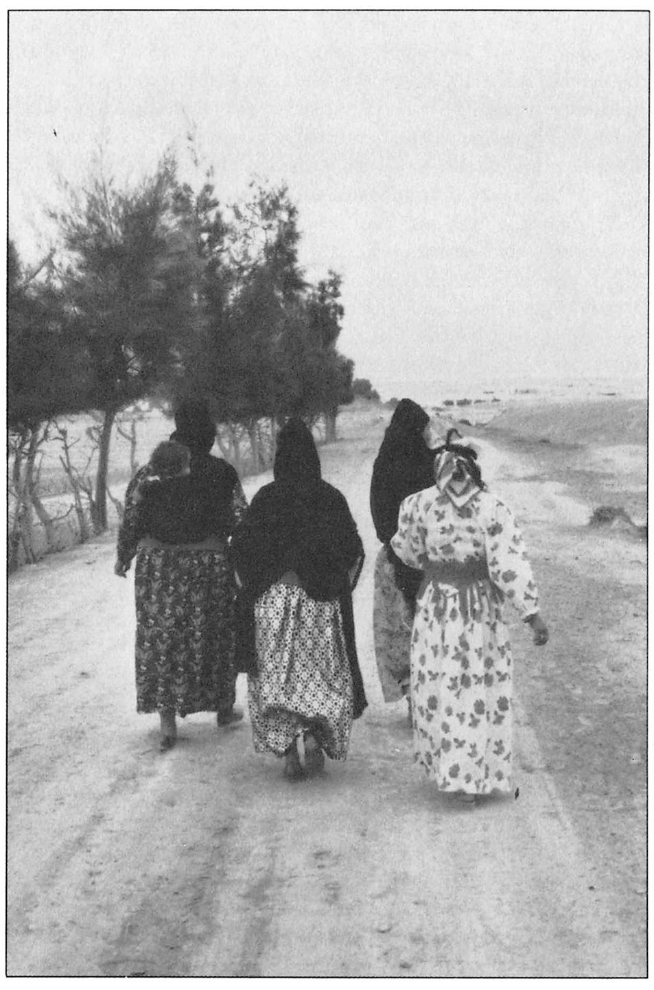 veiled sentiments Coupon: rent veiled sentiments honor and poetry in a bedouin society 2nd edition (9780520224735) and save up to 80% on textbook rentals.
