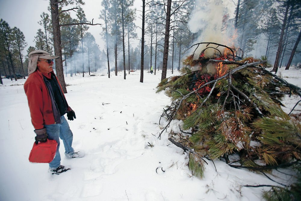'Tree hugger' has burning passion for forest health