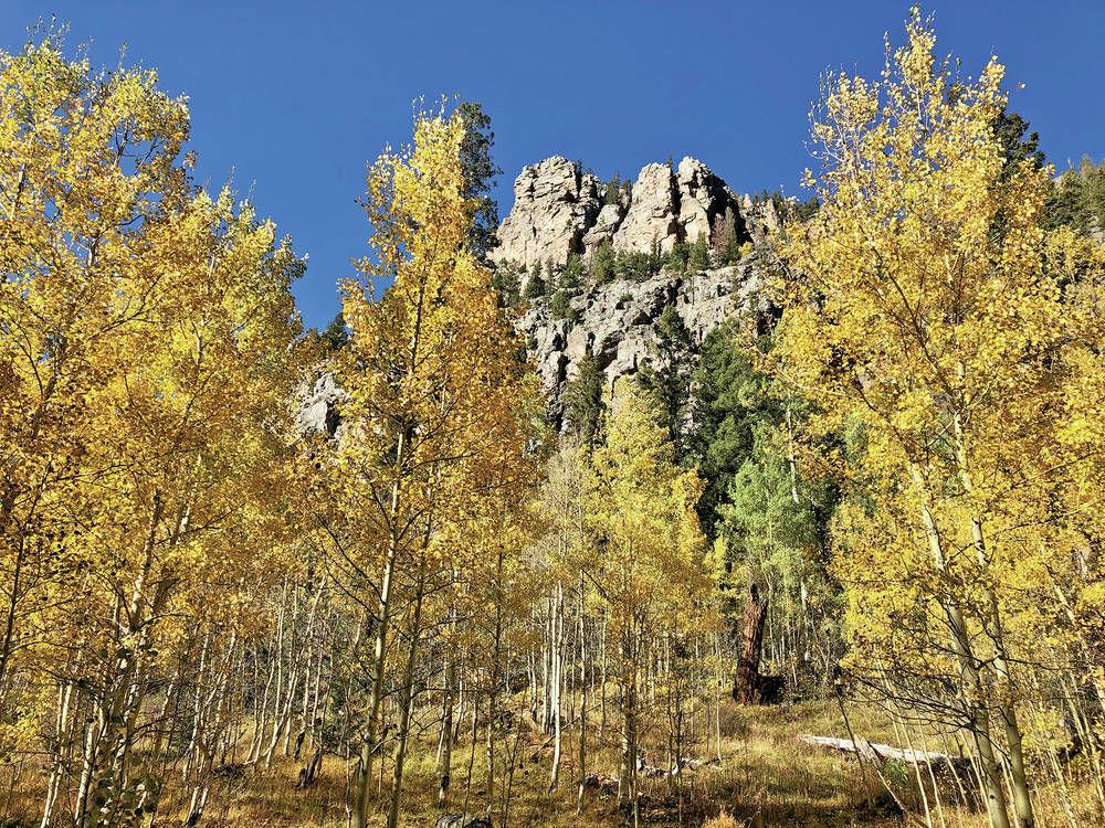 As trees turn, freezing weather arriving in Santa Fe