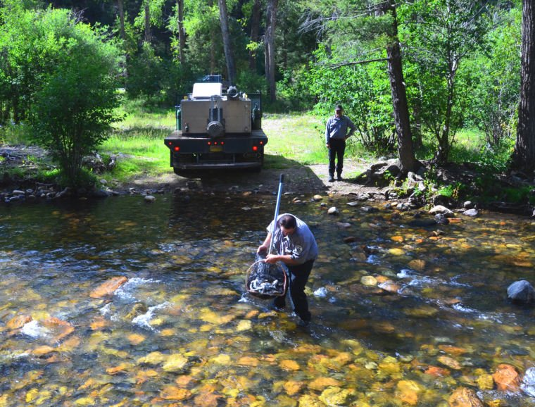 Some pecos river recreation areas reopen after devastating for Nm fish stocking report