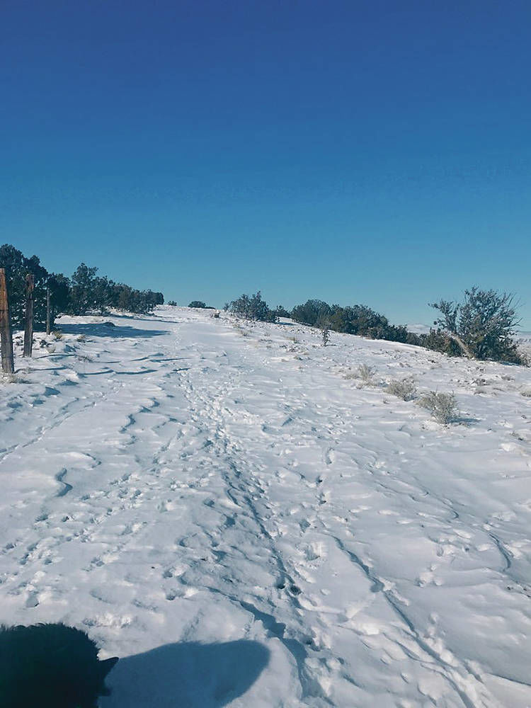 Snow strands residents for week in area west of Madrid