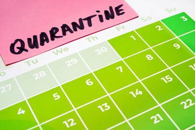 quarantine calendar image