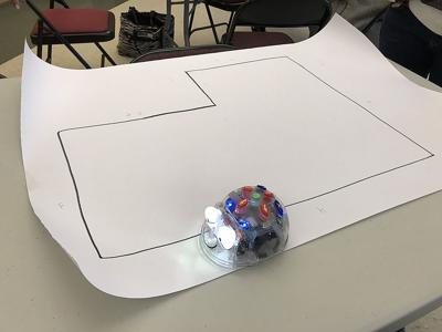 Coding robot Scarsdale photo