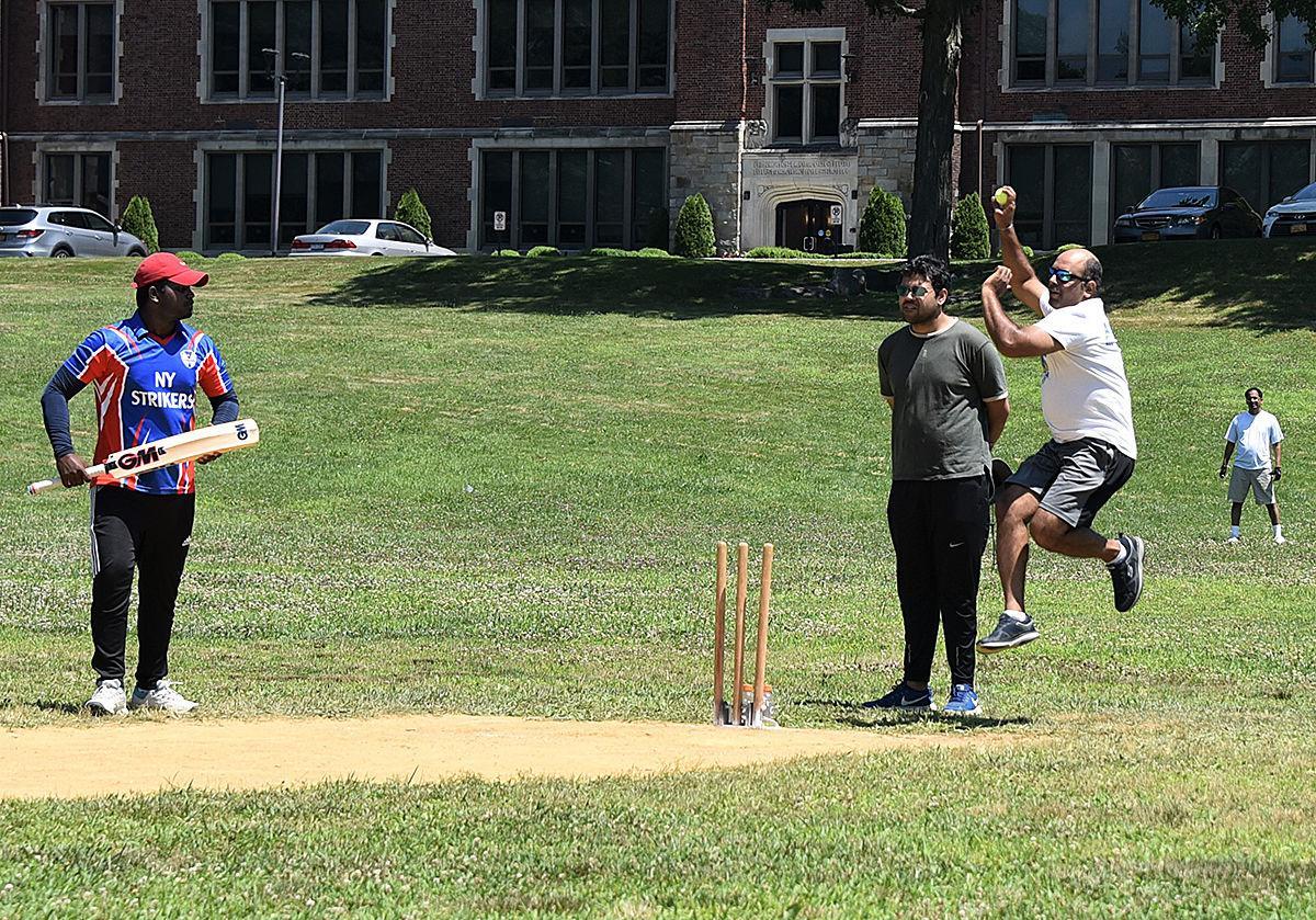 Cricket 2 photo