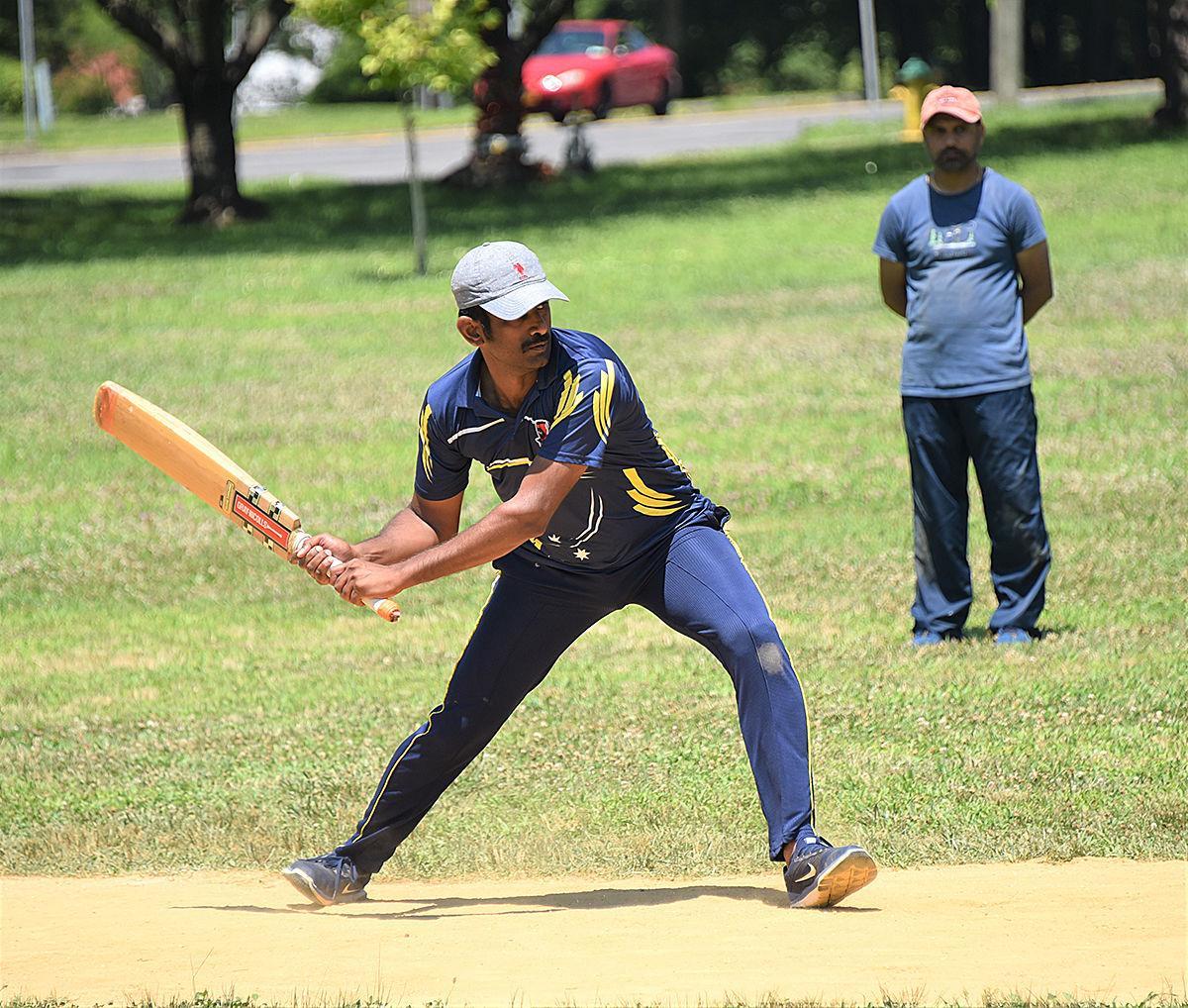 Cricket 1 photo