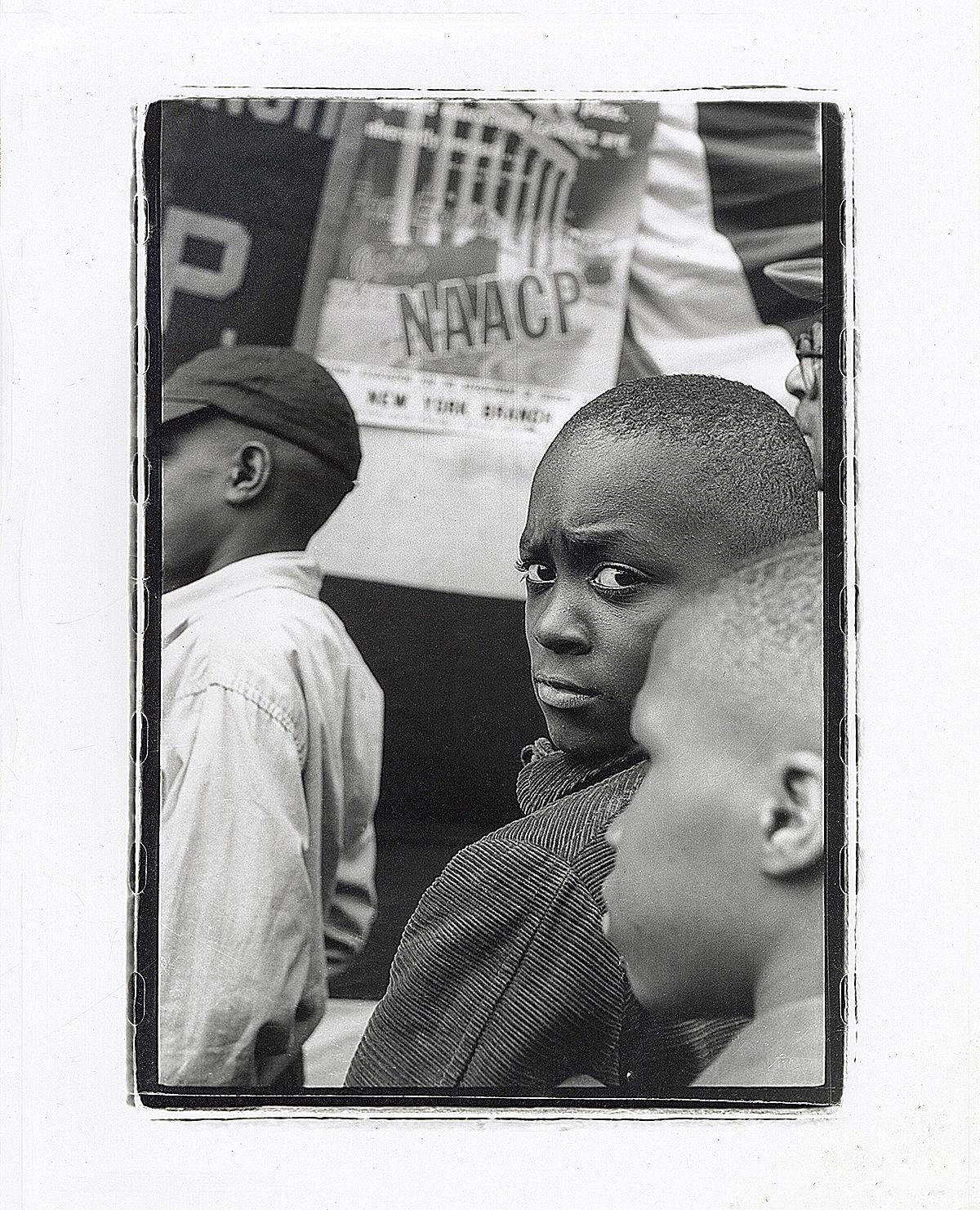 Snitzer NAACP.jpg