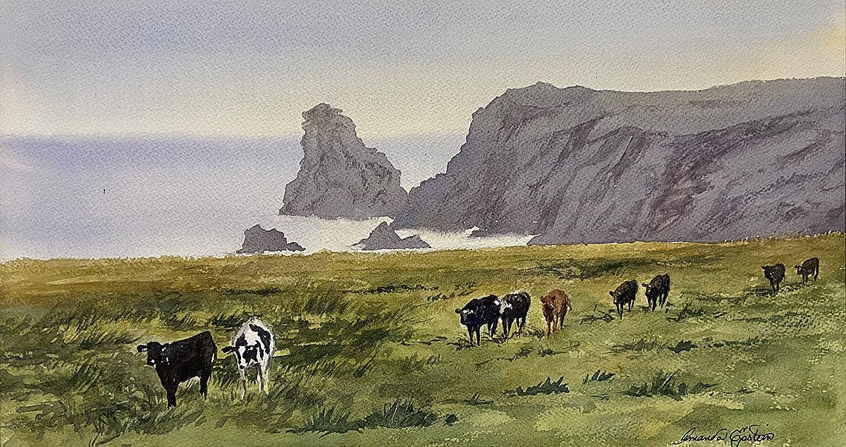 cornwall-cows.jpg