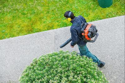Leaf blower image