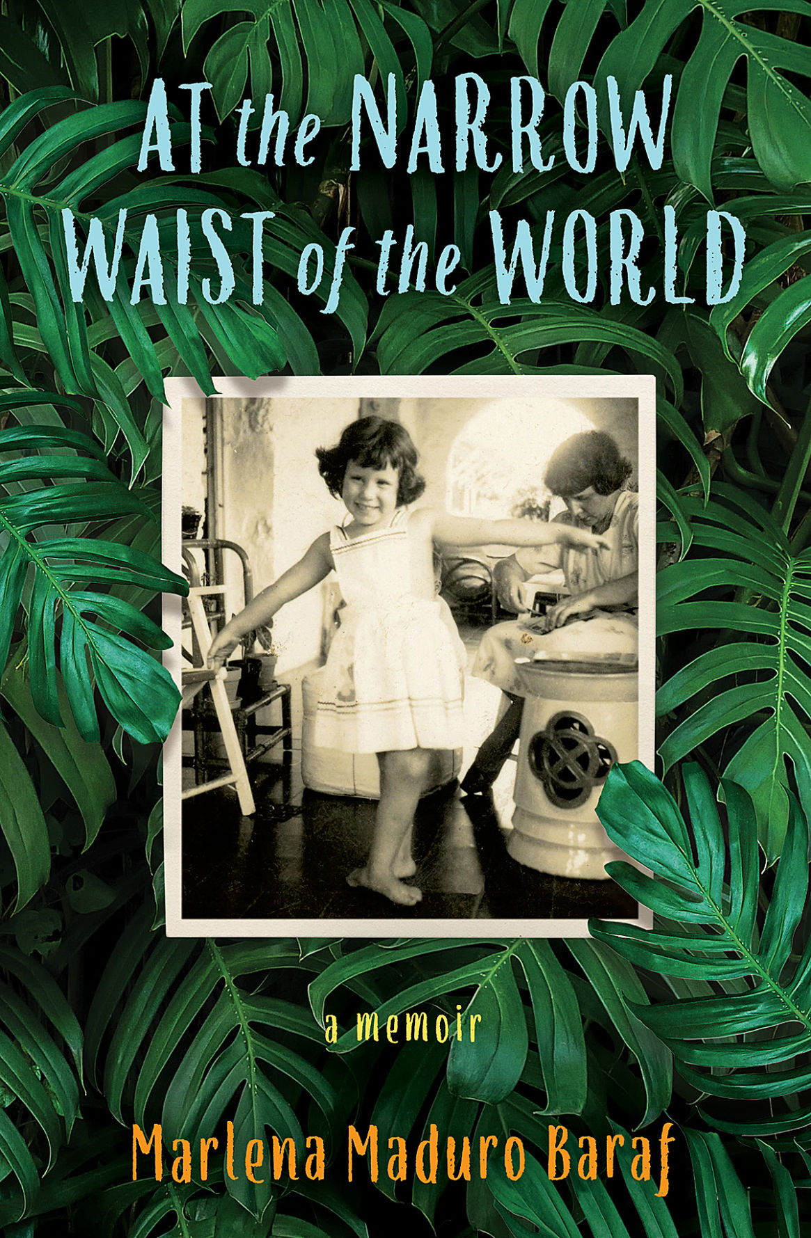 A&L At the Narrow Waist book cover.jpg