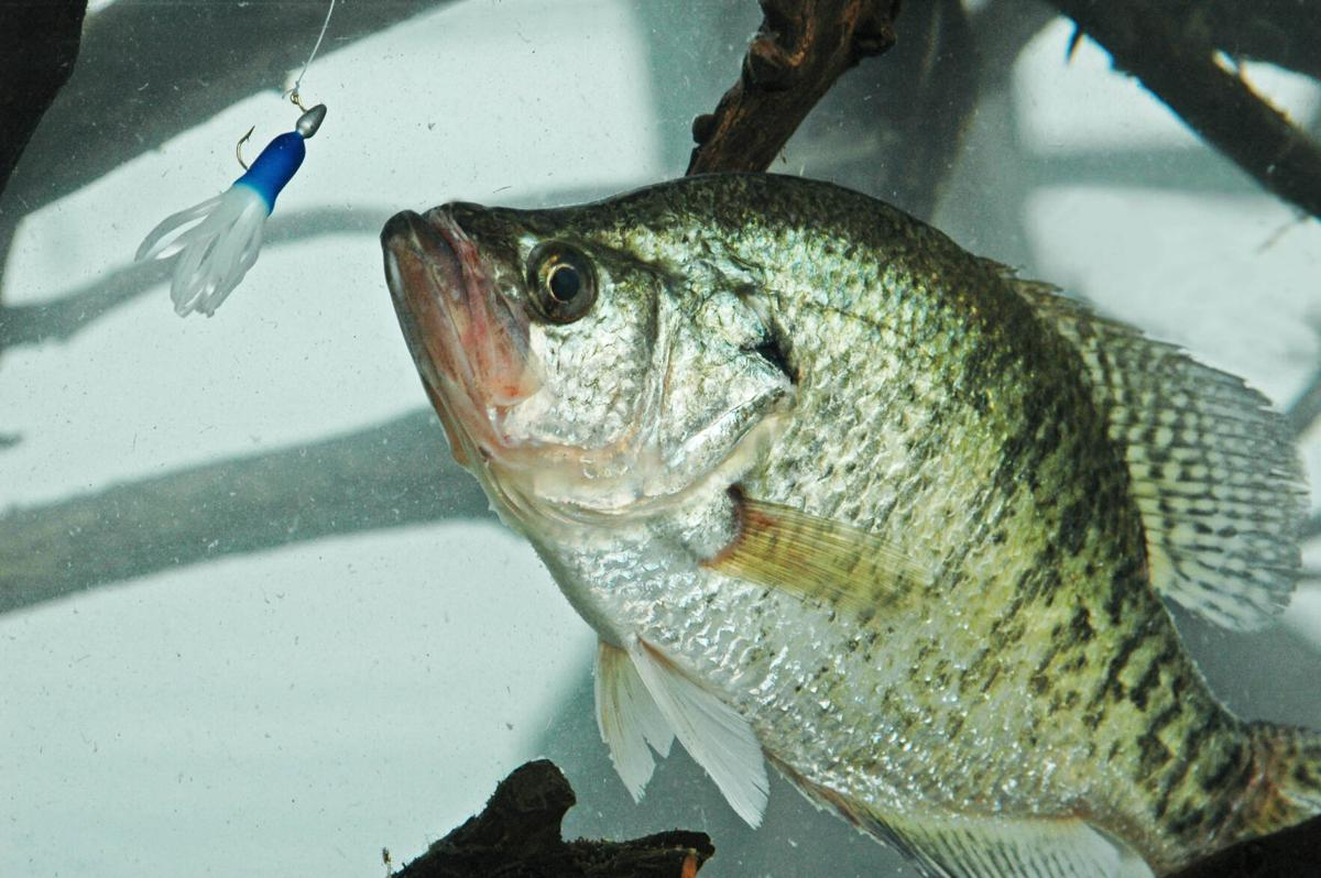 Crappie mistakes 2