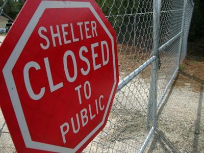 Chesterfield Shelter
