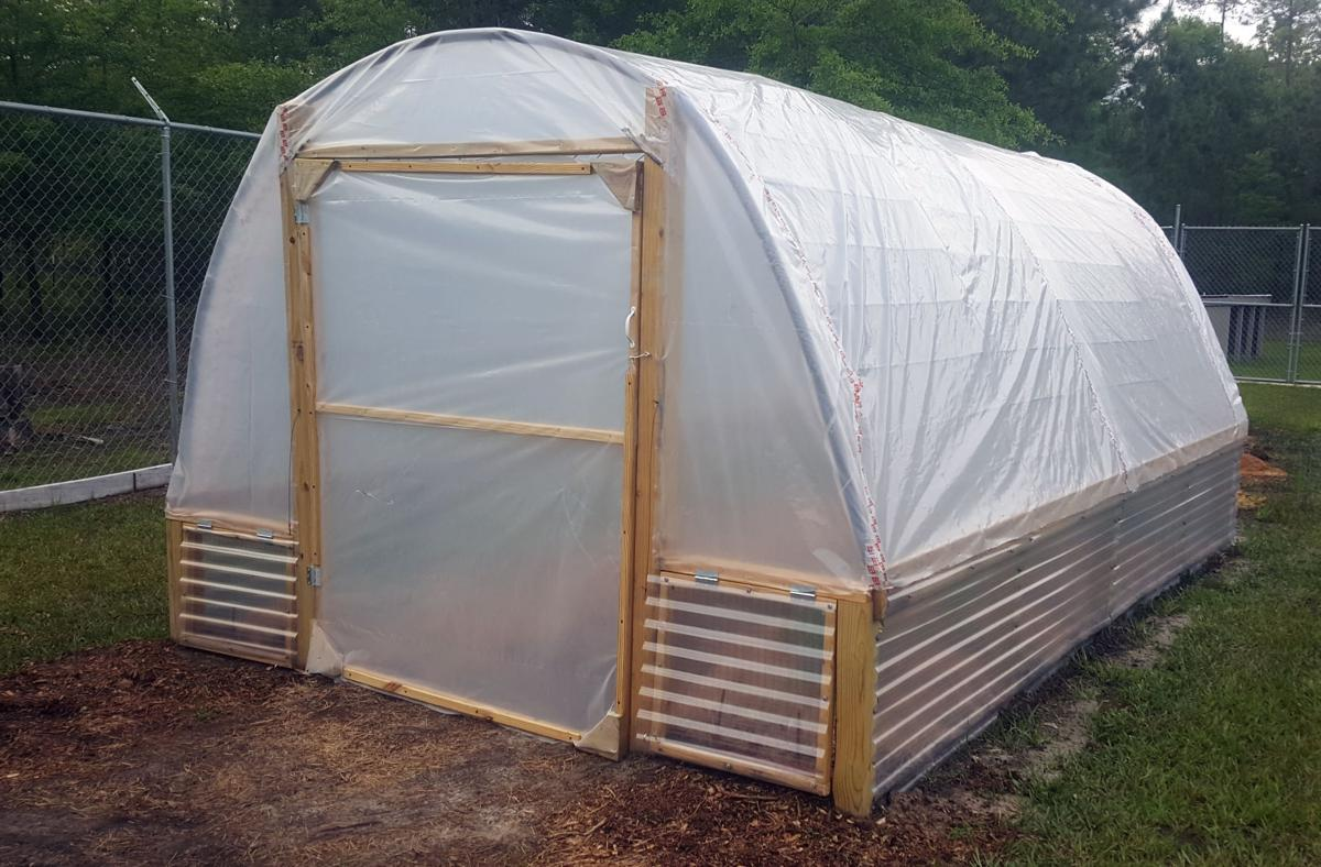 Cattle Panel Greenhouse