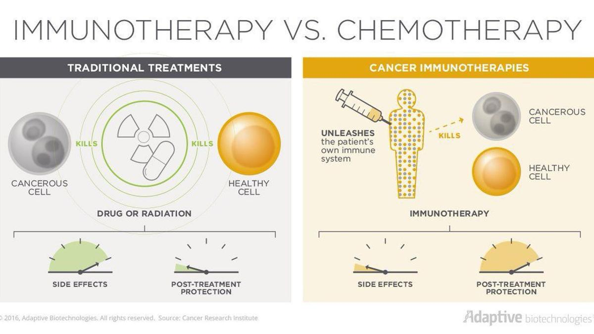 Immunotherapy: Boosting the body's natural defenses to fight cancer |  Health | scnow.com