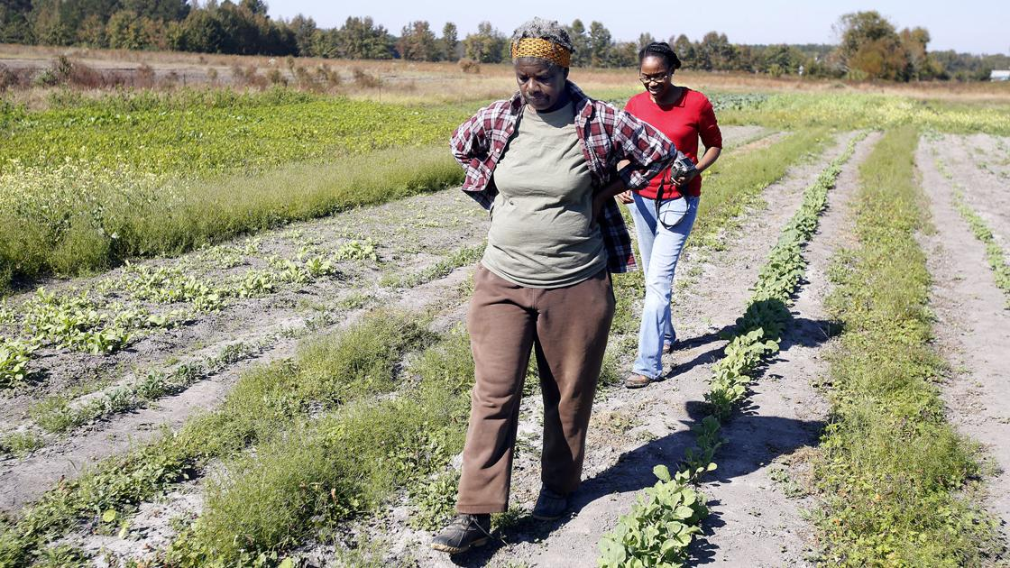 Local grant projects focus on African-American farming