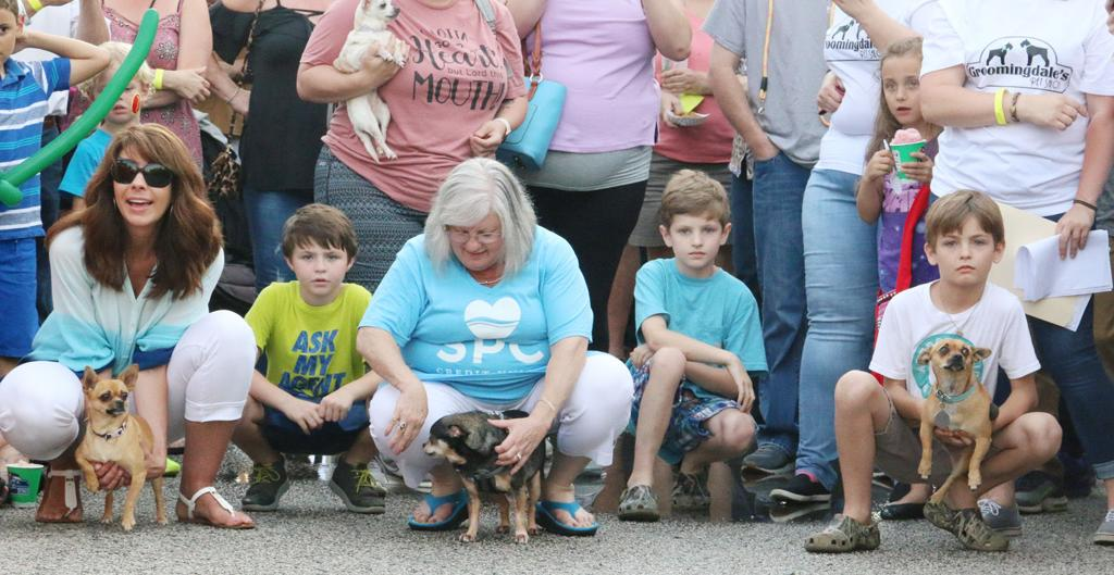 Folks fill downtown Florence for fiesta fun | Local News