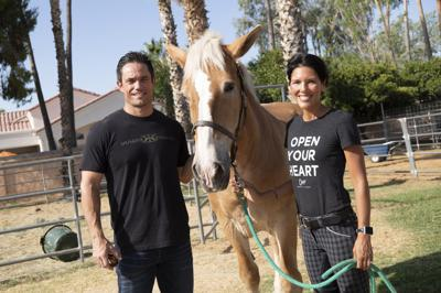 First responders lose horse therapy program