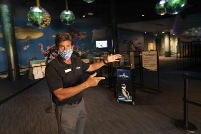 OdySea Aquarium Vice President Greg Charbeneau