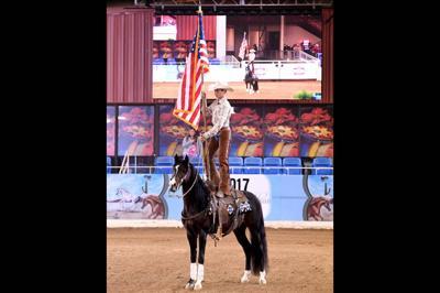 The Scottsdale Arabian Horse Show