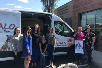 HALO Animal Rescue employees