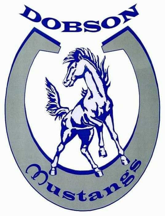 Dobson High Logo